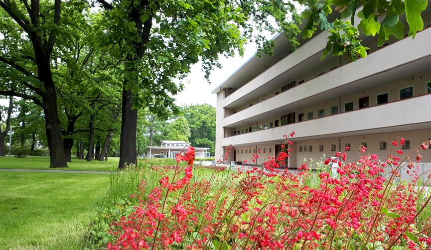 Kwitnące rabaty bylinowe na modernistycznym osiedlu WUWA
